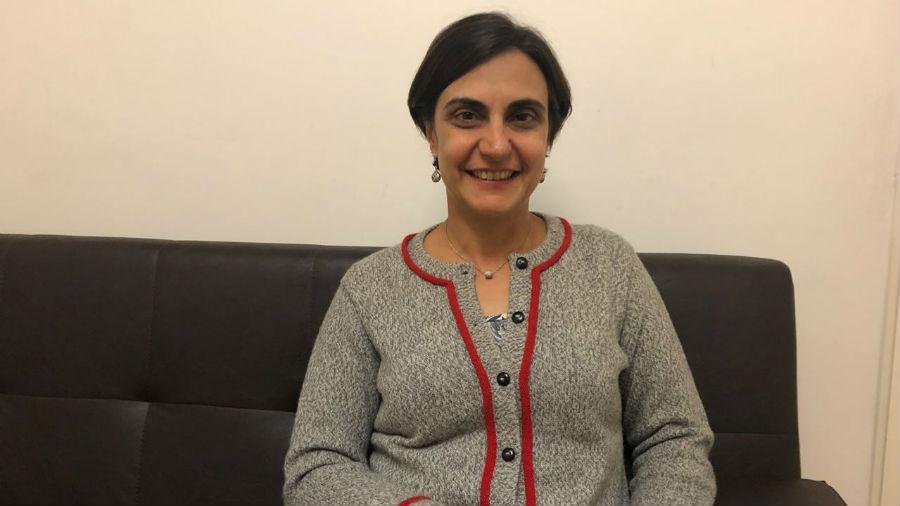 """Tulia Falleti: """"El Senado representa la posición más tradicional, conservadora y vieja de nuestra población"""""""